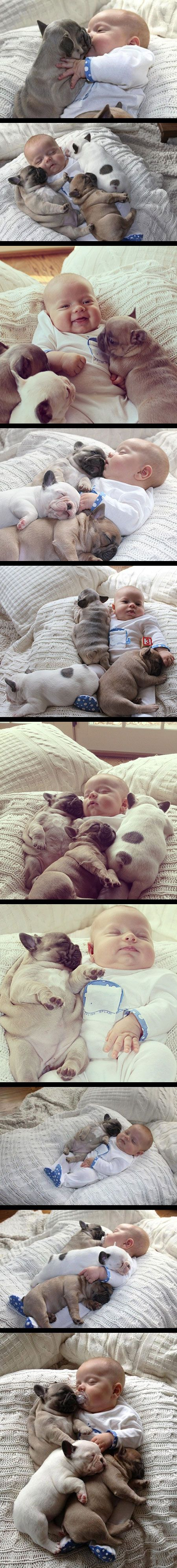 Oh my goodness! This is adorable!